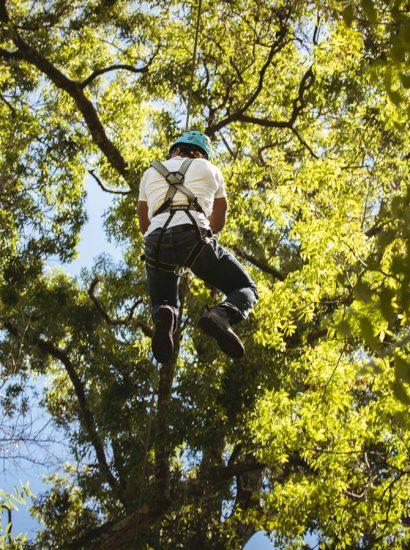 ziplining-through-trees-adventure-park